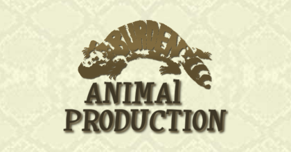 BURDEN ANIMAL PRODUCTION