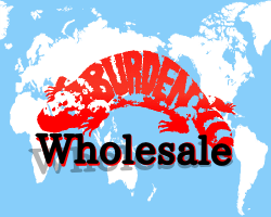 BURDEN WHOLESALE