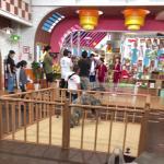日本テレビ『 世界の果てまでイッテQ!』にて、ミニブタ・三元豚の撮影を行いました。