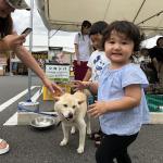 MEGAドン・キホーテ岐阜瑞穂店 夏祭り! イメージ6