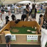 MEGAドン・キホーテ岐阜瑞穂店 夏祭り! イメージ2