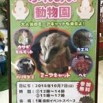 南越谷ラクーン様で移動動物園を開催しました!