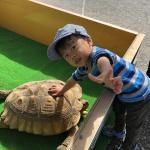 長野南ハウジングパーク様で移動動物園を開催しました! イメージ20