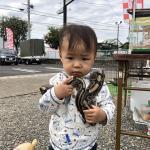長野南ハウジングパーク様で移動動物園を開催しました! イメージ12