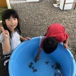 長野南ハウジングパーク様で移動動物園を開催しました! イメージ11
