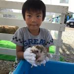 長野南ハウジングパーク様で移動動物園を開催しました! イメージ7
