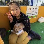 品川シーサイド住宅展示場様にて移動動物園を開催しました! イメージ3