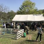 GW 今年も軽井沢に行ってきました! イメージ1