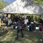 GW 今年も軽井沢に行ってきました! イメージ4