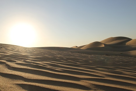 アブダビとドバイを旅してきました。7