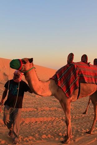 アブダビとドバイを旅してきました。9