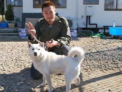 北海道犬1